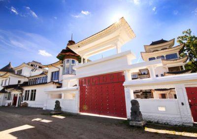 centrum-tradycyjnej-medycyny-chinskeij-yangtorp-brama-wejsciowa